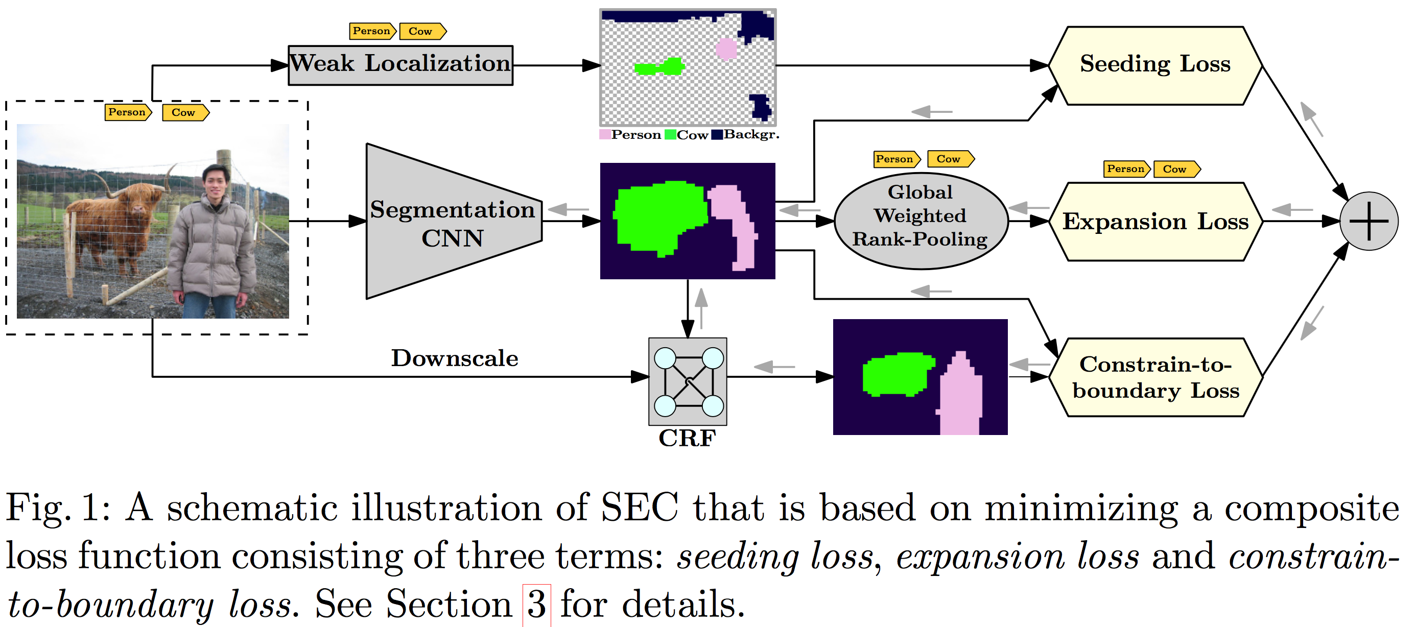 A schematic illustration of SEC